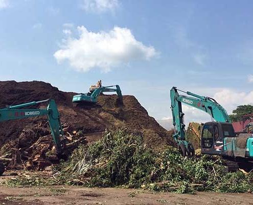 Landscaping Waste