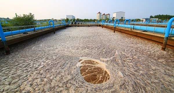 Sewage-Sludge