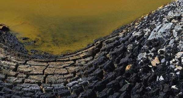 harmful oil sludge