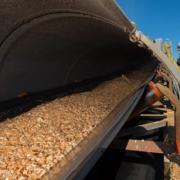 biomass industry